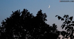 Фаза на луната Новолуние