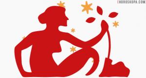 Годишен хороскоп Дева 2015